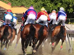 Different types of horse racing bets